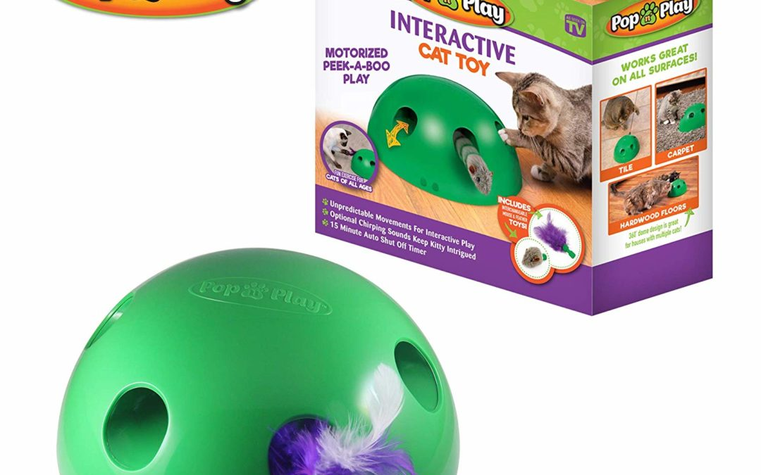 Allstar Innovations Pop N' Play Interactive Motion Cat Toy