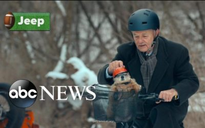 Star-studded Super Bowl commercials and the best ads of the big game   ABC News