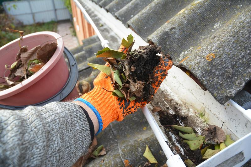 3 Preventative Home Maintenance Tasks That Can Save You Money in the Long Run