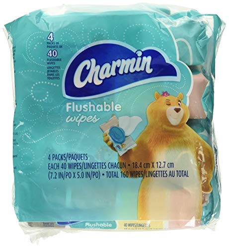 Charmin Flushable Wipes, 4 packs, 40 Wipes Per Pack, 160 Total Wipes