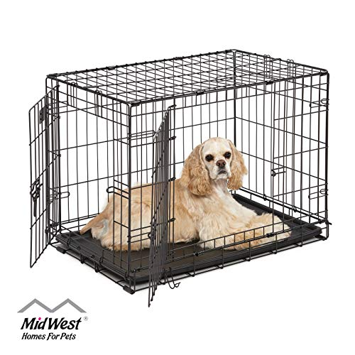 Dog Crate | MidWest ICrate 30 Inch Double Door Folding Metal Dog Crate w/ Divider Panel, Floor Protecting Feet & Leak Proof Dog Tray | 30L x 19W x 21H Inches, Medium Dog Breed, Black