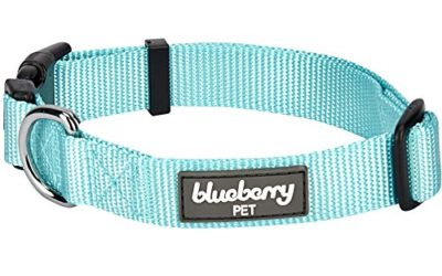 "Blueberry Pet Essentials 22 Colors Classic Dog Collar, Mint Blue, X-Small, Neck 8""-11"", Nylon Collars for Dogs"