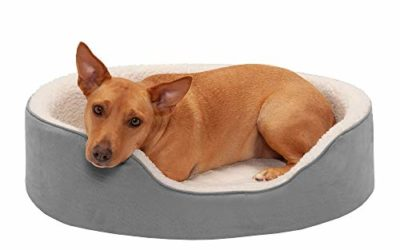 Furhaven Pet Dog Bed – Round Oval Cuddler Orthopedic Foam Nest Lounger Pet Bed for Dogs and Cats, Gray, Large