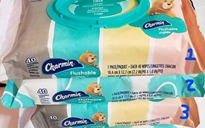 Charmin Freshmates Flushable Moist Wipes, 200 ct.