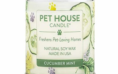 One Fur All 100% Natural Soy Wax Candle, 20 Fragrances – Pet Odor Eliminator, Up to 60 Hours Burn Time, Non-Toxic, Reusable Glass Jar Scented Candles – Pet House Candle, Cucumber Mint