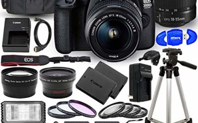 Canon EOS 2000D (Rebel T7) DSLR Camera with EF-S 18-55mm f/3.5-5.6 DC III Lens – Ultimate Accessory Bundle Includes: 2X SanDisk Ultra 32GB (64GB) SD Card, Extra LP-E10 Battery, Case and Much More