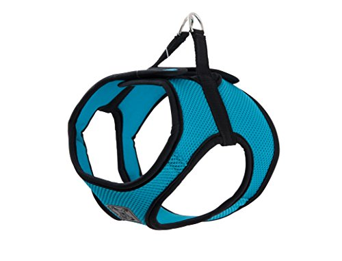 RC Pet Products Cirque Soft Walking Step in Dog Harness, Small, Teal