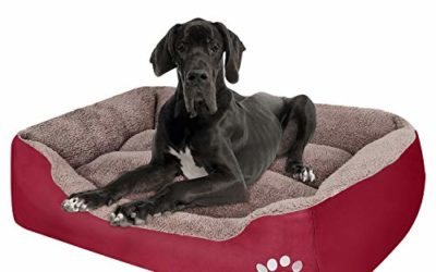 PUPPBUDD Dog Bed for Large Dogs Washable Comfortable Safety Pet Sofa Extra Firm Cotton Breathable for Large Dog and Jumbo Dog RED