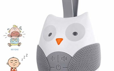 Baby Sleep Soother Shusher Owl White Noise Sound Machine Portable Infant Sleep Music Box with Auto-Timer for Traveling Sleeping & Baby Carrige