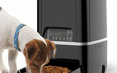 Automatic Pet Feeder | Auto Cat Dog Timed Programmable Food Dispenser Feeder for Medium Small Pet Puppy Kitten – Portion Control Up to 4 Meals/Day,Voice Recording,Battery and Plug-in Power 6.5L(Black)