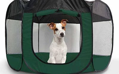 Furhaven Pet Playpen – Indoor-Outdoor Mesh Open-Air Playpen and Exercise Pen Tent House Playground for Dogs and Cats, Hunter Green, Large