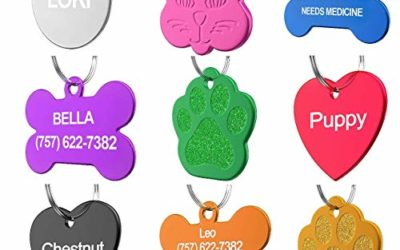 Dr. Fremont's Pet ID Tag Custom for Dog Cat Personalized | Many Shapes and Colors to Choose from | Made in USA | Strong Anodized Aluminum (Circle Silver, Small)