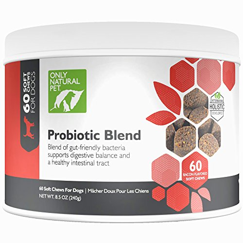 Only Natural Pet Probiotic Dog & Cat Supplement – Digestive Intestinal Tract Health Enzyme Formula – 60 Soft Chews