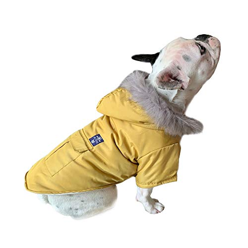 PetBoBo Cat Dog Doggie Down Jacket Hoodie Coat Pet Clothes Warm Clothing for Small Dogs Winter (M, Yellow)