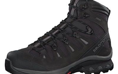 Salomon Men's Quest 4D 3 GTX Backpacking Boots, PHANTOM/Black/Quiet Shade, 11