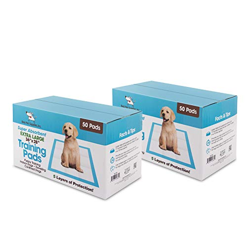 """Best Pet Supplies XLT-100 36"""" x 28"""" Puppy Traning Pads for Large Breeds, Pack of 100, Blue (X-Large)"""