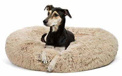 """Best Friends by Sheri Calming Shag Vegan Fur Donut Cuddler, Self-warming Removable and Washable Shell for Pets up to 100 lbs (Taupe, Large 36×36"""")"""
