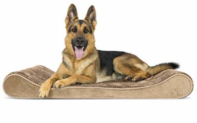 Furhaven Pet Dog Bed – Orthopedic Minky Plush and Velvet Ergonomic Luxe Lounger Cradle Mattress Contour Pet Bed with Removable Cover for Dogs and Cats, Camel, Jumbo