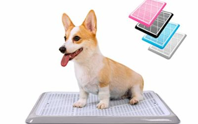 """Pet Awesome Dog Potty Tray / Pee Pad Holder (25""""x20"""") for Small and Medium Dogs"""