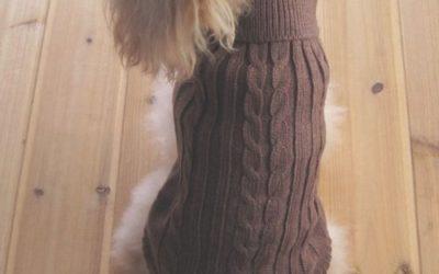 Tangpan Turtleneck Classic Straw-Rope Pet Dog Sweater Apparel (Blue,M)