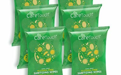 Care Touch Alcohol-Free Hand Sanitizing Wipes – 6 Pouches, 120 Wipes – Hand Wipes with Vitamin E and Aloe Vera – Great for Babies and Adults, Safe for All Skin Types – Made in The USA