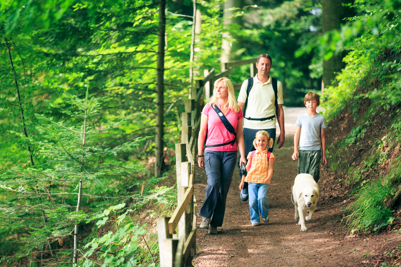 Fun Family Activities that Save Money
